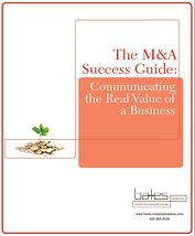 M&A Success Guide