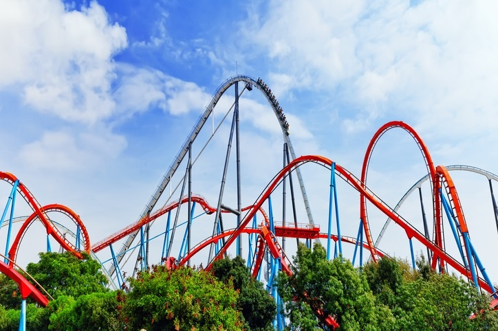 It's the Year of the Leadership Roller Coaster – Trends and Predictions